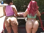 Nothing better to satisfy the BIGGEST ASS CRAVING than Pinky and Cherokee. These two beautiful asses go pound for pound fucking and sucking.